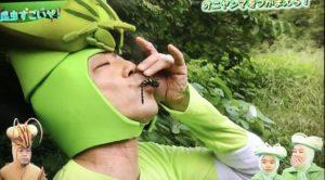 カマキリ先生5