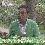 カマキリ先生が作詞した歌とは?切ない歌詞は香川照之自身の気持ち?