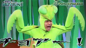 カマキリ先生7