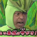 香川照之の昆虫愛の深さがわかる!熱血教師・カマキリ先生とは?