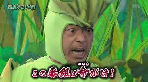カマキリ先生 ダメ出し