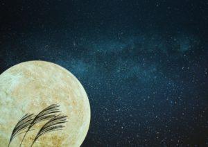 お月見 楽しみ方