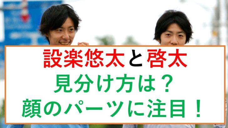設楽悠太と啓太の見分け方は?双子だけど顔のパーツが違っていた!