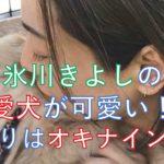 [画像]氷川きよしの愛犬たちが可愛い!新入りは犬ではなくオキナインコ?
