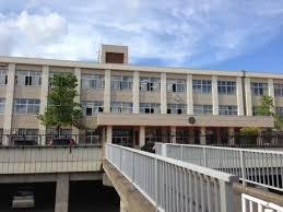 王林 出身 中学校 画像