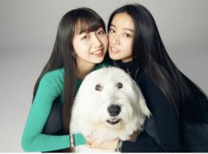 犬 犬種 キムタク アム