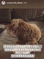 木村拓哉 画像