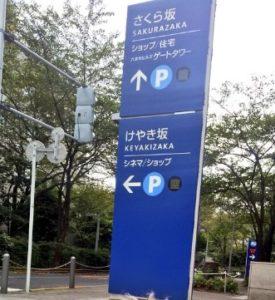 櫻坂 画像